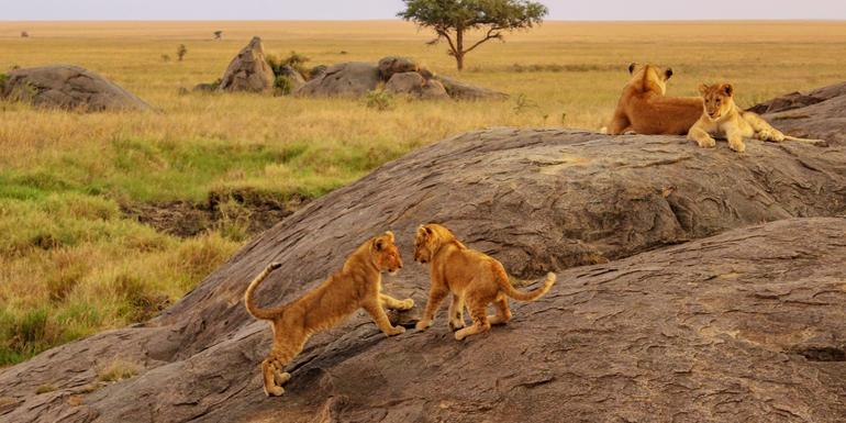East Africa Overland tour