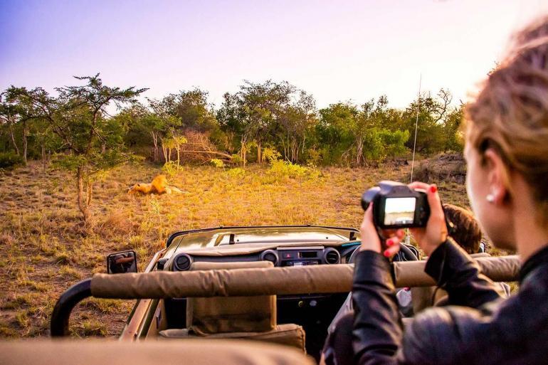 Cape, Safari & Falls(Twin Room,Start Cape Town, End Victoria Falls) tour