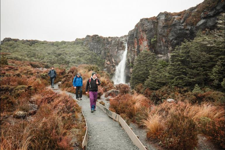 Abel Tasman National Park Auckland New Zealand North Island Explorer (ex Christchurch) Trip