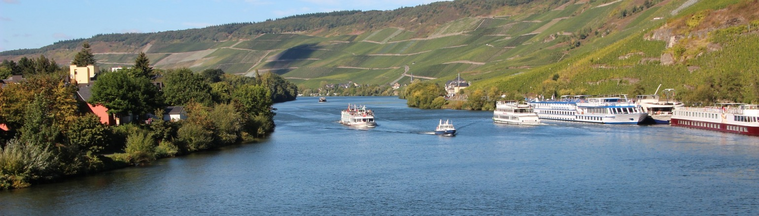 Europe River Cruise, Moselle River in France