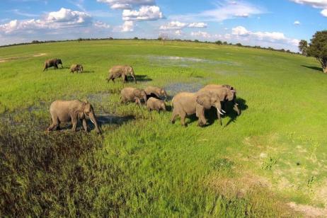 Luxury Zimbabwe Wildlife Safari tour