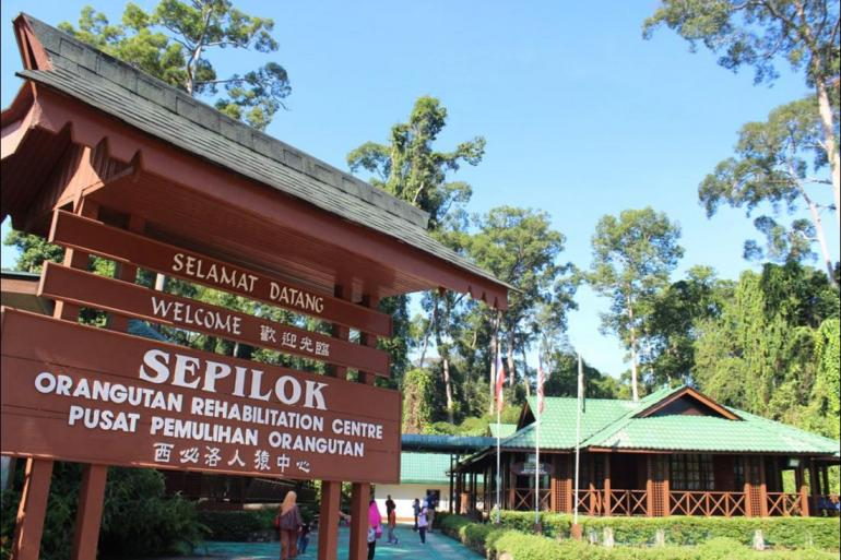 Borneo Kota Kinabalu Borneo Family Holiday Trip