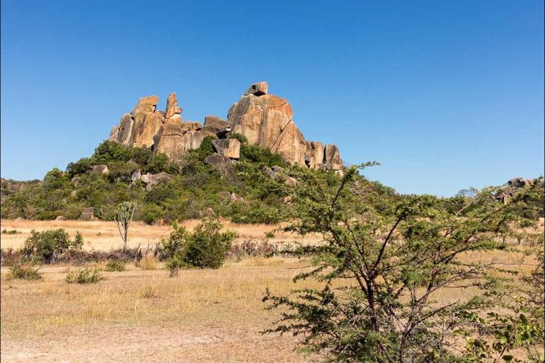 Kruger National Park Limpopo Vic Falls to Kruger Trip