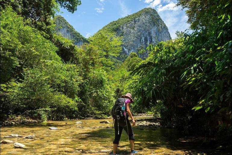 Borneo Kota Kinabalu Wild Sarawak Trip