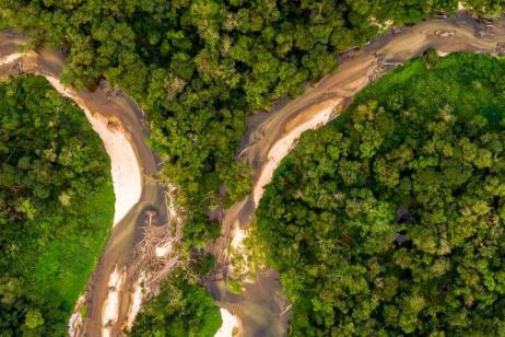 Ecuador: Amazon Jungle Experience – Independent tour