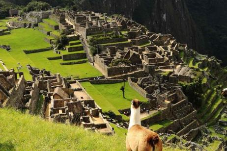 Machu Picchu by Hiram Bingham Train Experience - Independent tour