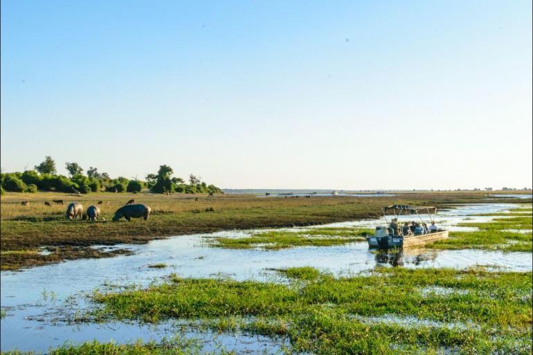 Okavango Delta Victoria Vic Falls to Cape Town Trip