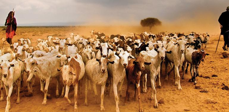 The Masai Heartlands tour