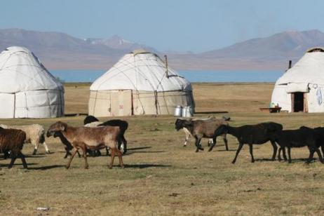 Kyrgyzstan & Uzbekistan Explorer tour