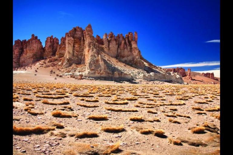 Puerto Varas Santiago Atacama to Paine Trip