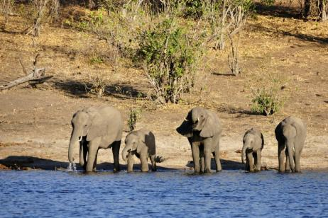 Botswana/Zambia Family | Okavango Delta To Victoria Falls tour