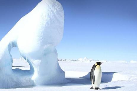 Classic Antarctica tour