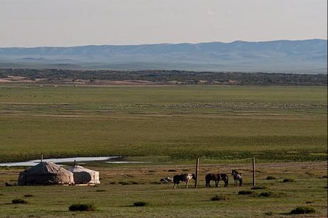 Mongolian Adventure tour