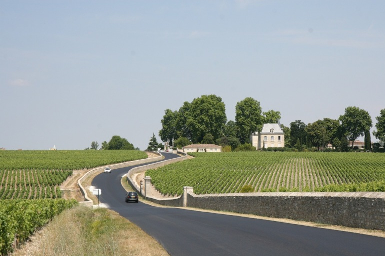 A Focus On Wine Tasting tour