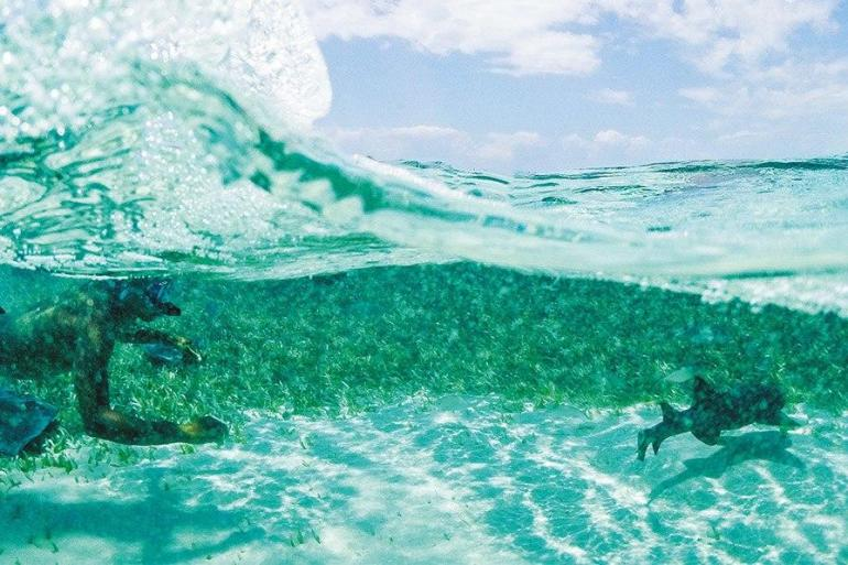Caribbean Encounter(Twin Room,Start Cancun, End Antigua) tour