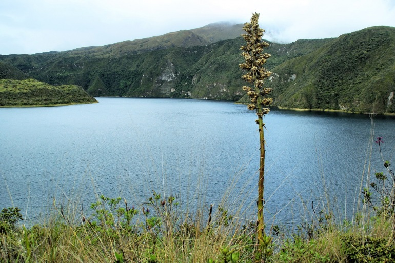 Beautiful Cotacachi Lake View, Ecuador