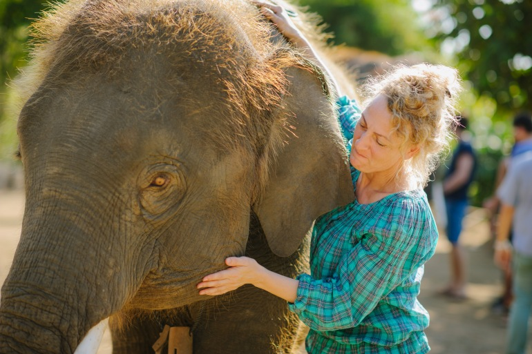 Family Friendly Culture Thailand – The Elephant Conservation Expedition package