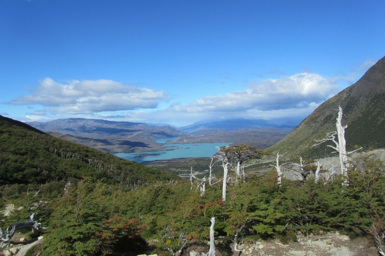 Incredible View of Torres Del Paine-Chile-303179-P