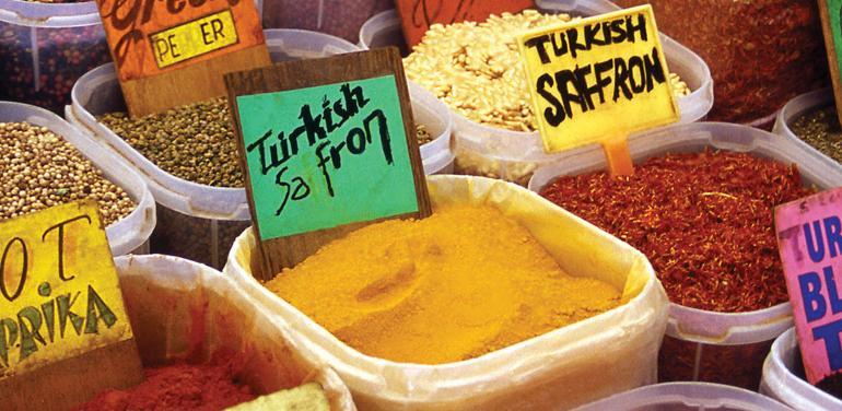Bite-size Break Istanbul tour