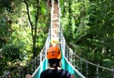 High Adventure tour costa rica canopy bridge