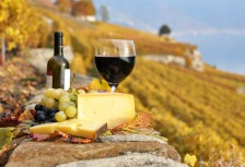 red wine and cheese on picnic Italy culinary tour