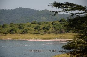 Marangu Route from REI Adventures