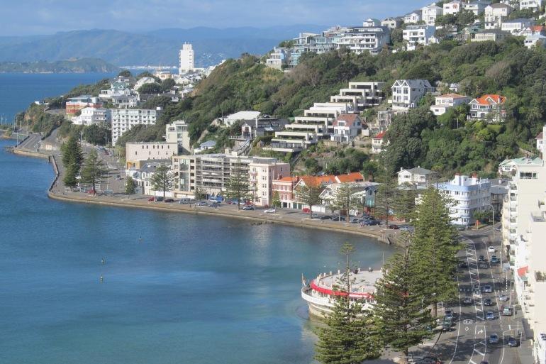 Wellington oriental bay_New Zealand- 1090591-P