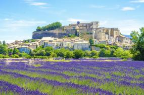 Highlights of Provence tour