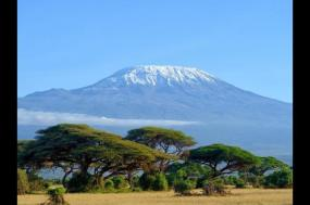 Kilimanjaro-Lemosho Trek + Safari Extension tour