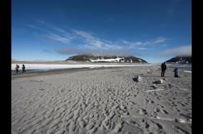 Realm of the Polar Bear - M/S Spitsbergen tour