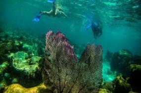 Explore Belize tour