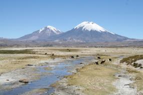 Exploring the Land of the Inca tour