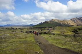 Hornstrandir Hike tour