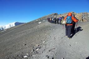Kilimanjaro Trek & Wildlife Safari tour