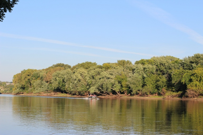 Greenary Tress in Mississippi River_USA__449889_P