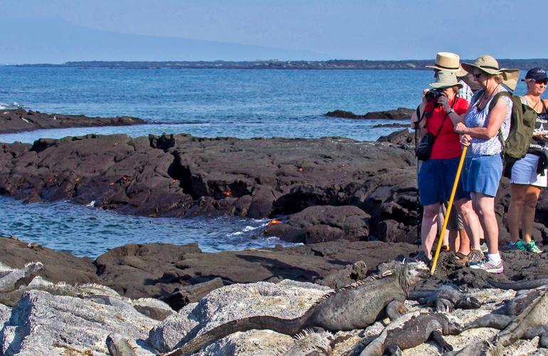 Galapagos at a Glance: Southern Islands (Daphne) tour