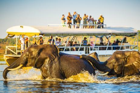 Classic Botswana Explorer tour