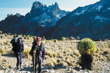 Mount Kenya Ascent tour