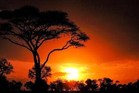 Nairobi to Zanzibar Adventure tour