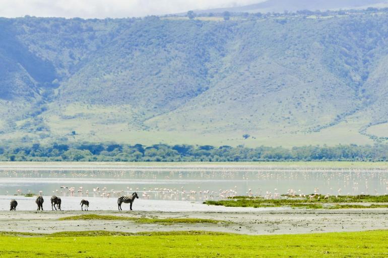 Tanzania Family Safari tour