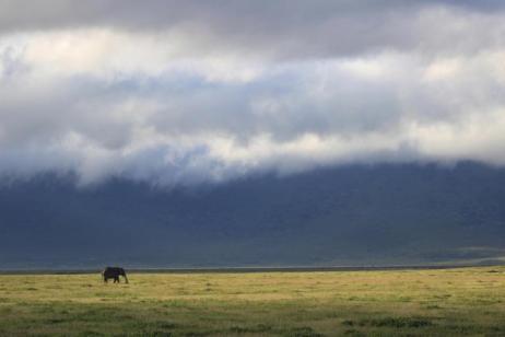 Kenya & Tanzania Adventure tour