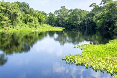 Brazil Pantanal Experience - Independent tour