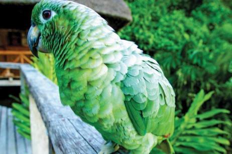 Ecuador & Galapagos Island Hopper Me to We tour