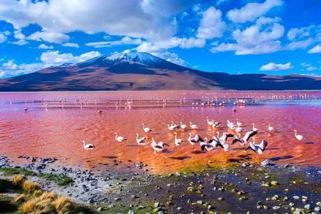 Peru & Bolivia Explorer tour