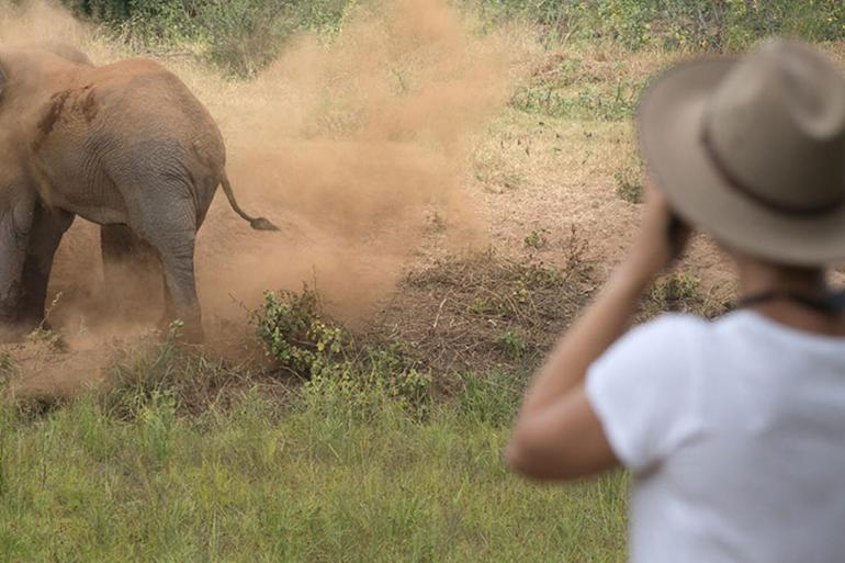 South Africa: Kruger Walking Safari tour