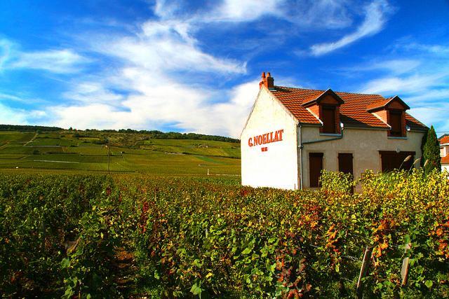 Burgundy Self-Guided Walking tour
