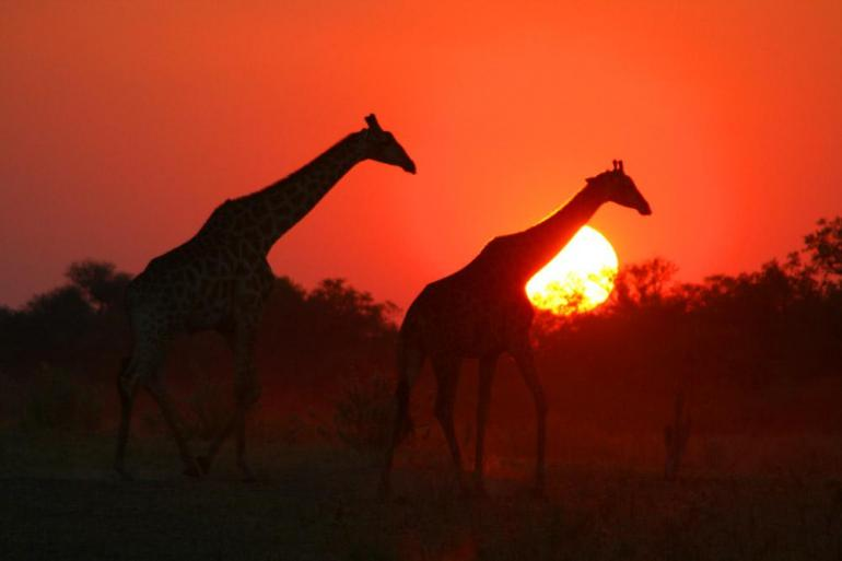 Arusha Cape Town Grand Africa: Nairobi to Port Elizabeth Trip