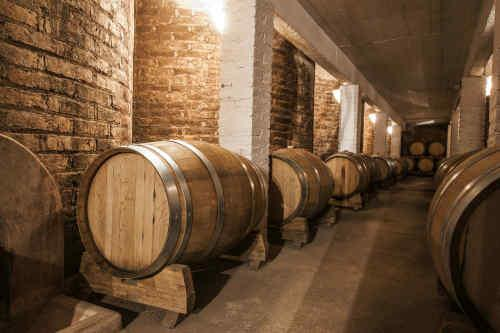 Food & Wine: A Taste of Argentina tour