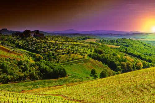Rome and Tuscany tour