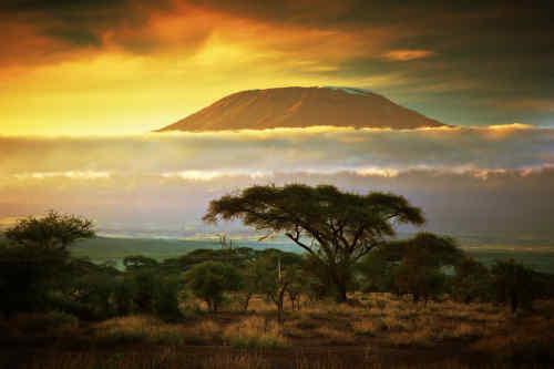 Taste of Kenya tour